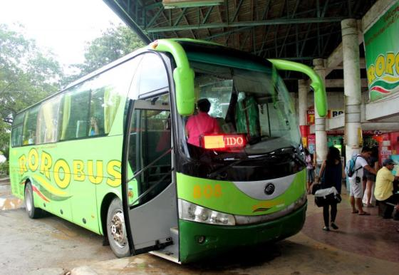 Roro bust is the cheapest and most comfortable transportation going to El Nido.